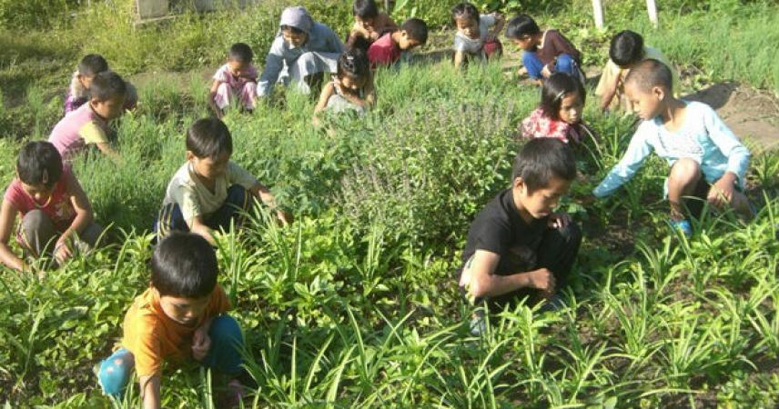 TOM QUA: Internato - Jardim de Infância - serviços pastorais